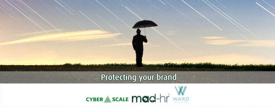Protecting your brand webinar